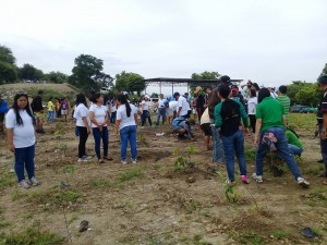 Joint Tree Planting Activity (12)