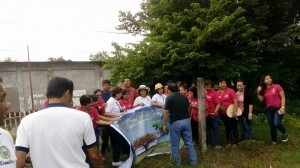Joint Tree Planting Activity (15)