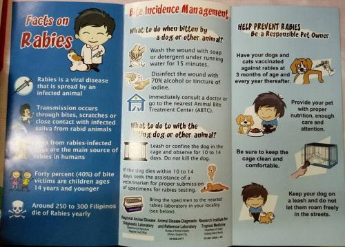 Anti-Rabies Awareness  Campaign  (3)