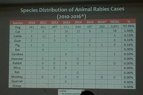 Anti-Rabies Awareness  Campaign  (7)