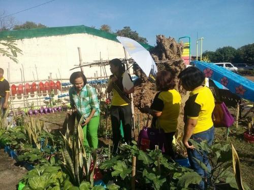 Garden Visitation at  San Vicente Elementary School (7)